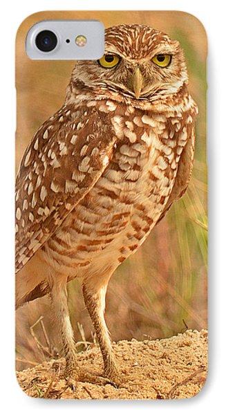 Burrowing Owl IPhone Case