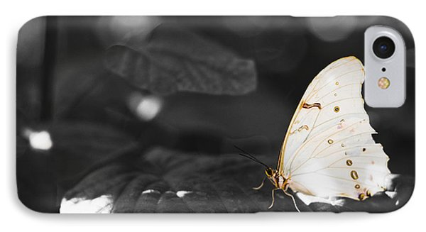 Butterfly IPhone Case by Bradley R Youngberg