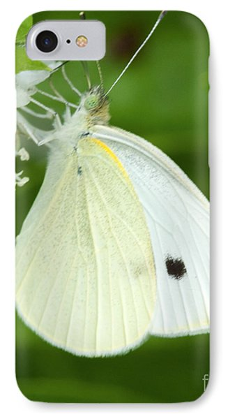 Cabbage White Butterfly IPhone Case by Iris Richardson