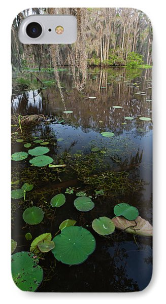 Caddo Lake, Texas's Largest Natural Lake IPhone Case