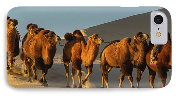 Camel Caravan In A Desert, Gobi Desert IPhone Case by Panoramic Images
