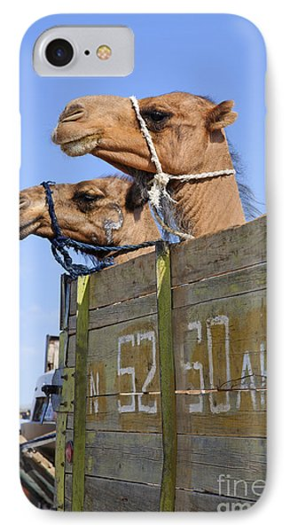 Camels At The Ashgabat Sunday Market In Turkmenistan Phone Case by Robert Preston