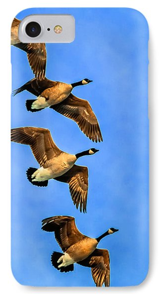 IPhone Case featuring the photograph Canada Geese by Brian Stevens