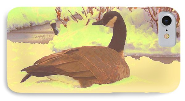 Canadian Goose IPhone Case by Larry Campbell