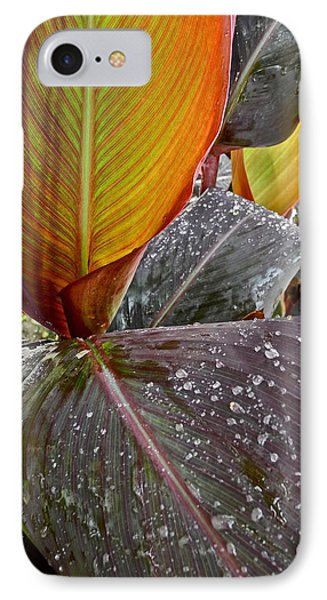 Canna Lily I  Phone Case by Kirsten Giving