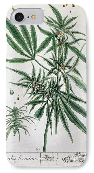 Cannabis  IPhone Case by Elizabeth Blackwell