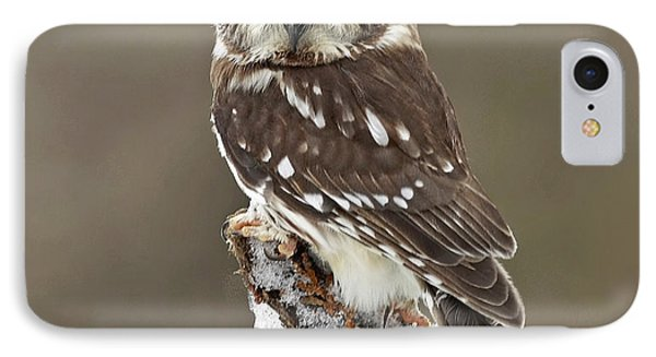 Captivation Phone Case by Inspired Nature Photography Fine Art Photography