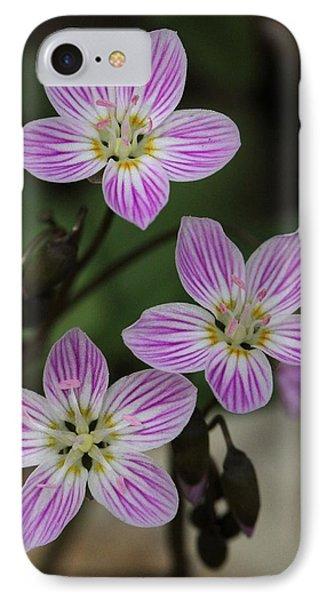Carolina Spring Beauty IPhone Case