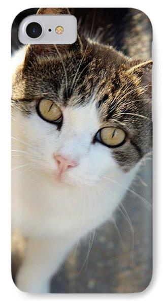 Cat Eyes IPhone Case by Cora Wandel