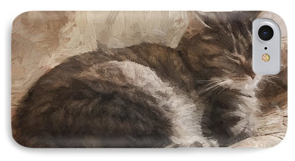 Cat On The Bed Painterly IPhone Case by Carol Leigh