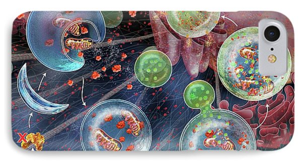 Cellular Autophagy IPhone Case by Nicolle R. Fuller