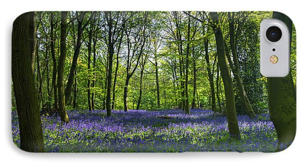 Chalet Wood Wanstead Park Bluebells IPhone Case by David French