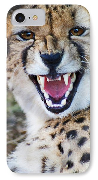 IPhone Case featuring the painting Cheetah With Attitude by Stanza Widen