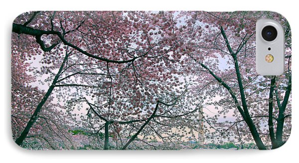 Cherry Blossom Trees IPhone Case by Mitch Cat