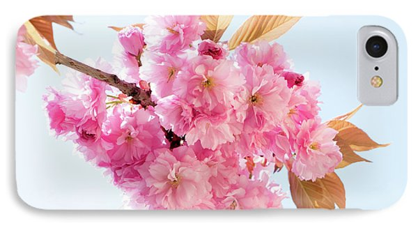 Cherry Blossom IPhone Case by Wladimir Bulgar