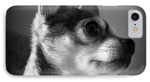 Chihuahua IPhone Case by Michelle Wolff