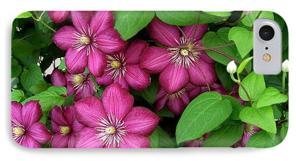 Clematis Phone Case by Penny Lisowski