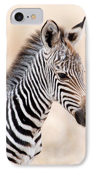 Close-up Of A Burchells Zebra Equus IPhone Case by Panoramic Images