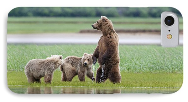 Coastal Brown Bear Sow With Her Two IPhone Case by Kent Fredriksson