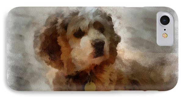 Cocker Spaniel Photo Art 01 IPhone Case by Thomas Woolworth