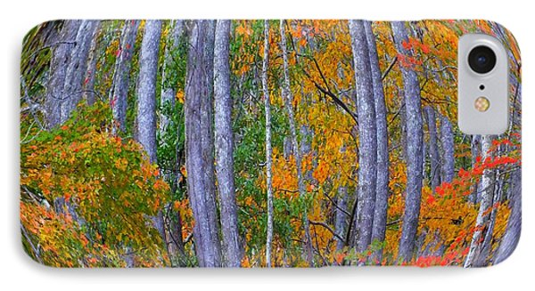Colorful Fall Forest Phone Case by Scott Cameron