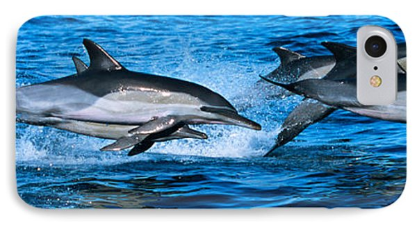 Common Dolphins Breaching In The Sea IPhone Case by Panoramic Images