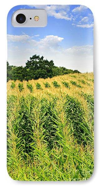 Corn Field IPhone Case by Elena Elisseeva