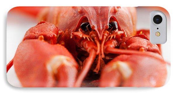 Crawfish IPhone Case