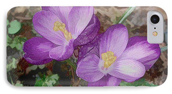 Crocus  IPhone Case by Bonnie Willis