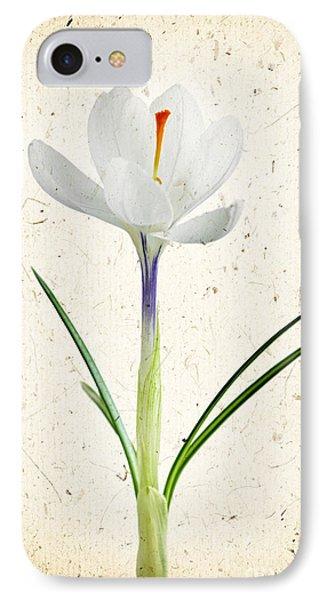 Crocus Flower IPhone Case
