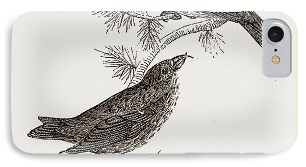 Crossbills IPhone 7 Case by Litz Collection