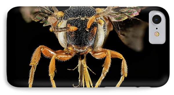 Cuckoo iPhone 7 Case - Cuckoo Bee by Us Geological Survey