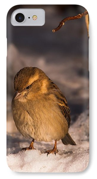 IPhone Case featuring the photograph Deep In Thought by Rose-Maries Pictures