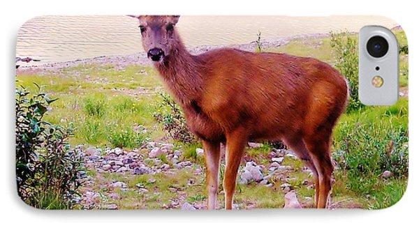 Deer Visit IPhone Case