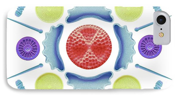 Diatoms And Sponge Spicules IPhone Case
