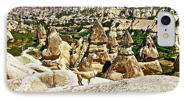 Dog Looking At Fairy Chimneys In Cappadocia-turkey IPhone Case by Ruth Hager