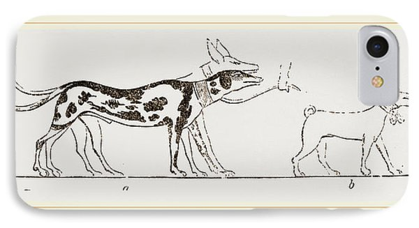 Dogs From Egyptian Paintings IPhone Case by Litz Collection