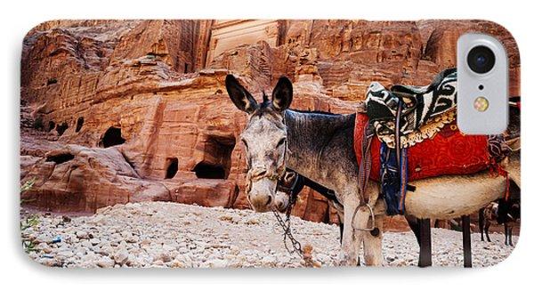 Donkey IPhone Case by Jelena Jovanovic