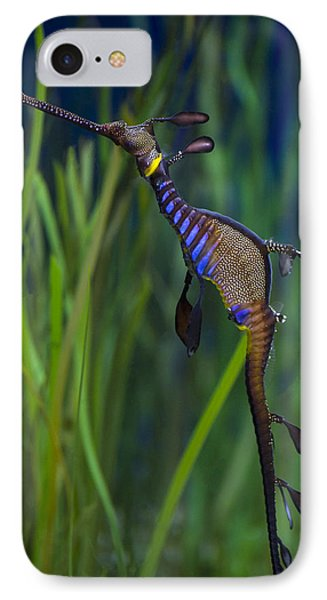 Dragon Seahorse Phone Case by Diego Re