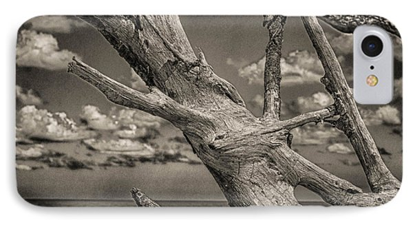 Driftwood IPhone Case by J Riley Johnson