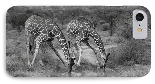 Drinking In Tandem Phone Case by Michele Burgess