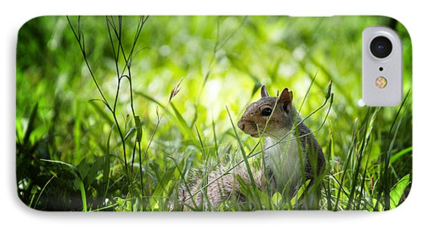 IPhone Case featuring the photograph Eastern Gray Squirrel by Zoe Ferrie