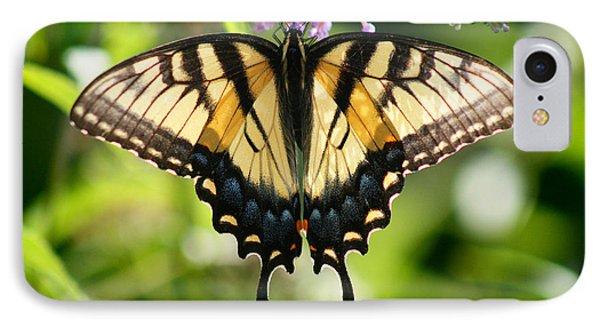 Eastern Tiger Swallowtail Butterfly Phone Case by Karen Adams