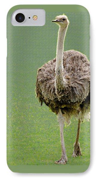 Emu IPhone Case by Ellen Henneke