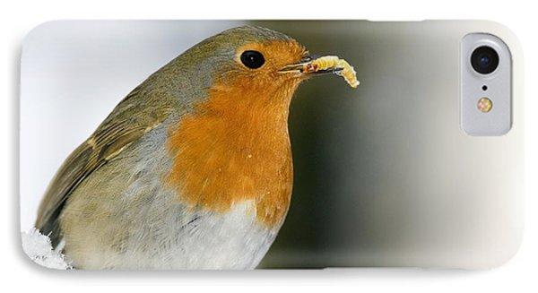European Robin Feeding On A Mealworm IPhone Case by Duncan Shaw