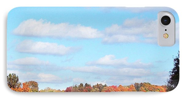 Fall Colors IIi IPhone Case