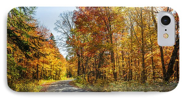Fall Forest Road IPhone Case