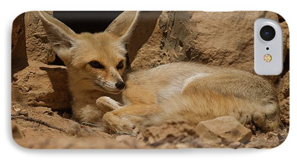 Fennec Fox IPhone Case by Photostock-israel