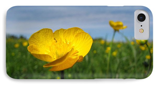 Field Of Buttercups Phone Case by Matt Taylor