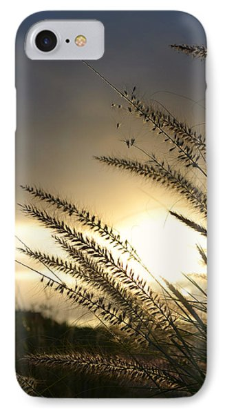 Field Of Dreams IPhone Case by Laura Fasulo